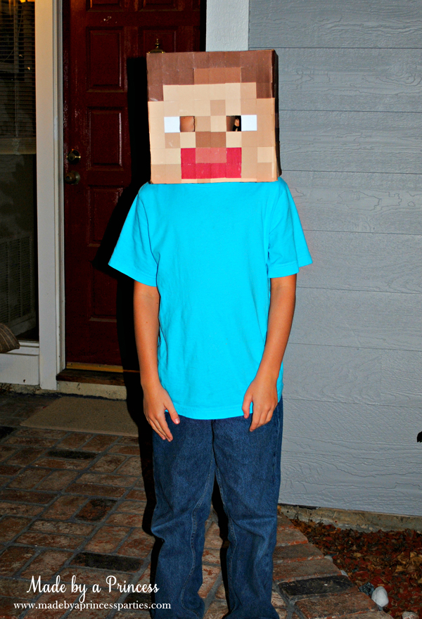 Make Your Own Minecraft Steve Head Made By A Princess