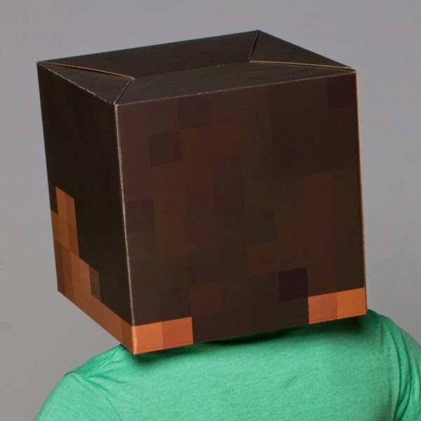 image about Minecraft Steve Head Printable referred to as Produce Your Individual Minecraft Steve Mind - Built through A Princess