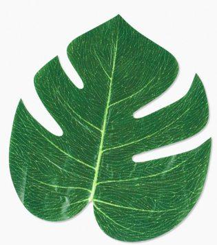 Moana Party Ideas tropical leaves