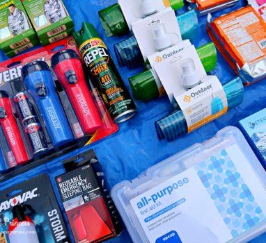 Unique School Auction Idea Emergency Preparedness Kit includes bug spray and mylar blankets