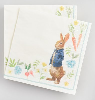 Peter Rabbit Tea Party Inspiration Floral Lunch Napkins