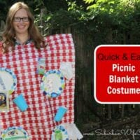 DIY Picnic Blanket Costume