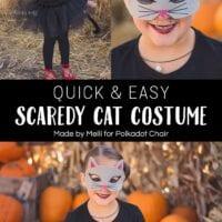 Easy Cat Costume Tutorial with No-Sew Tutu