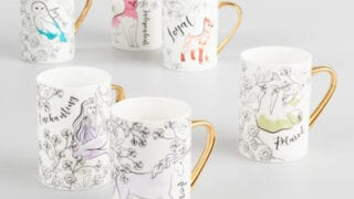 Spirit Animal Mugs Set of 6