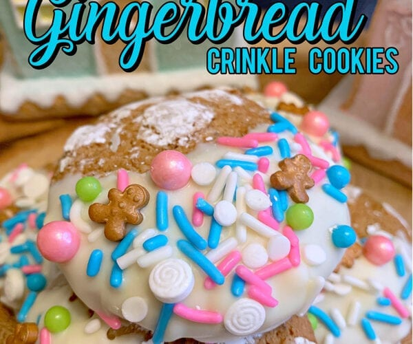 Soft Gingerbread Cookie Recipe for the Holidays