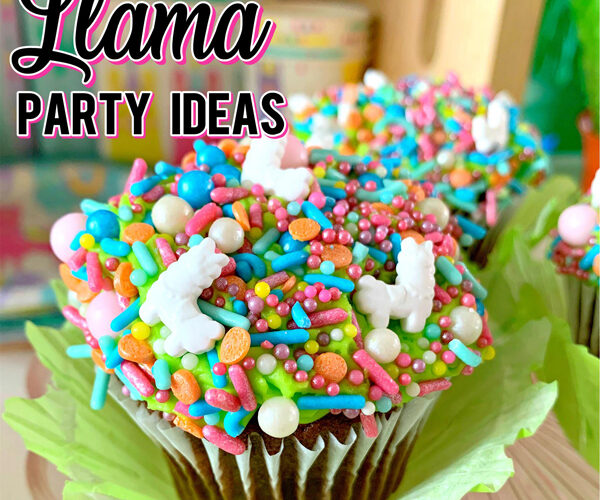 Cute Girly Llama Party Ideas